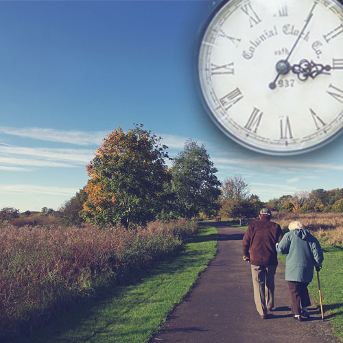When Is the Right Time to Buy an Annuity Insurance?